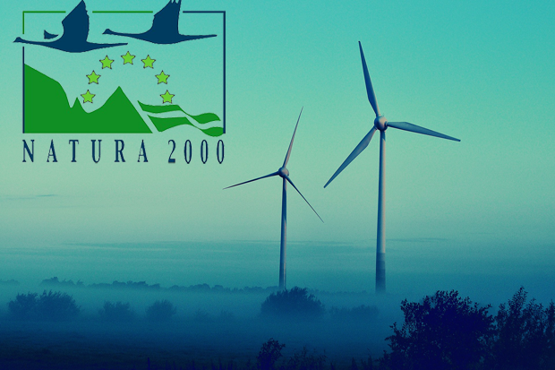 Wind energy development and Natura 2000 Network